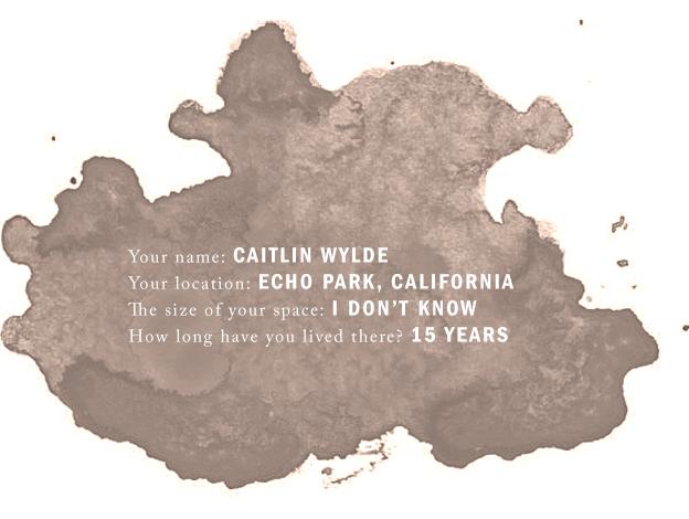 Questionnaire Caitlin Wylde - Scandinavia Standard 2