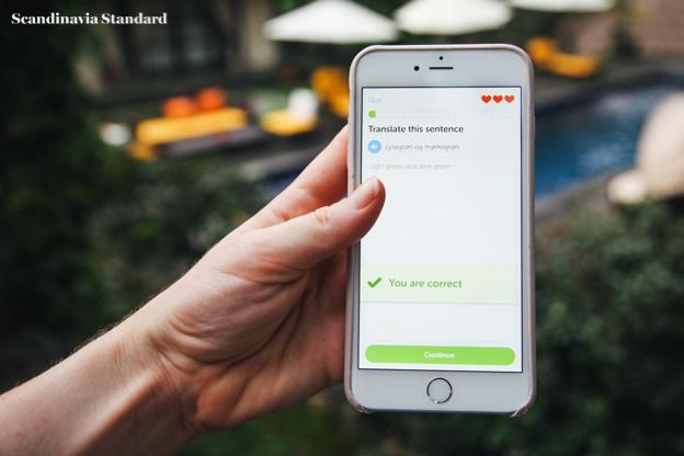 Duolingo - Learning Danish | Scandianvia Standard