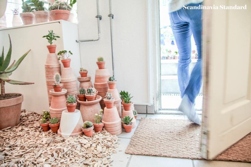 Kaktus Copenhagen - Exit - Plant Cluster - Jægersborggade | Scandinavia Standard