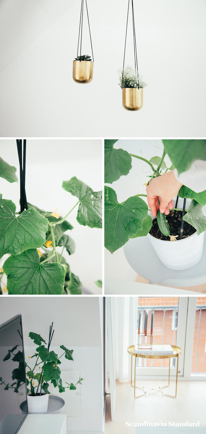 The White Room - Christina & Ulrich's Østerbro Apartment - Interiors - Collage 6 | Scandinavia Standard