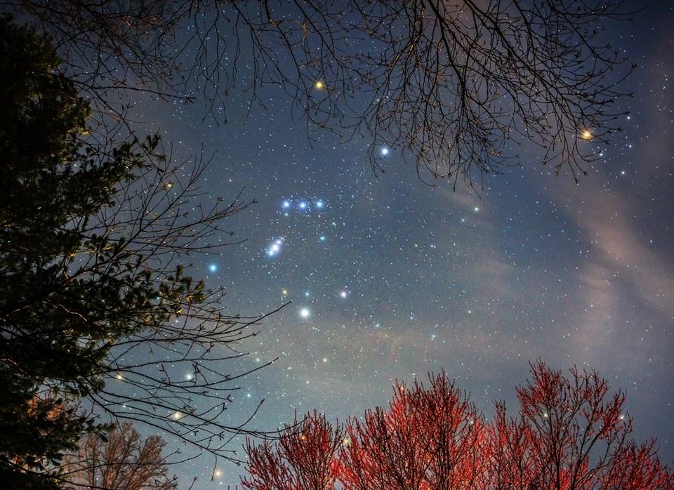 star night - jan 2015 - whats on copenhagen
