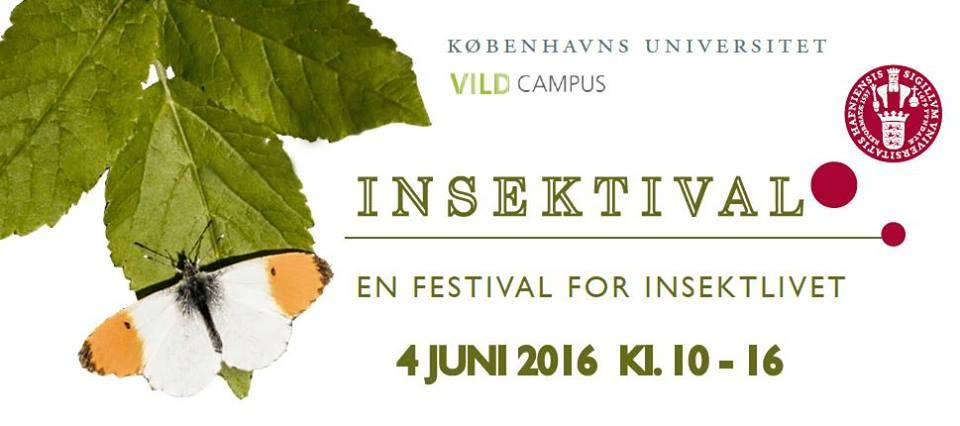 INSEKTIVAL - JUNE 2016 - COPENHAGEN