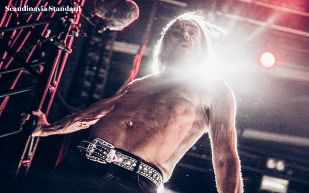 iggy-pop-at-northside-festival-scandinavia-standard