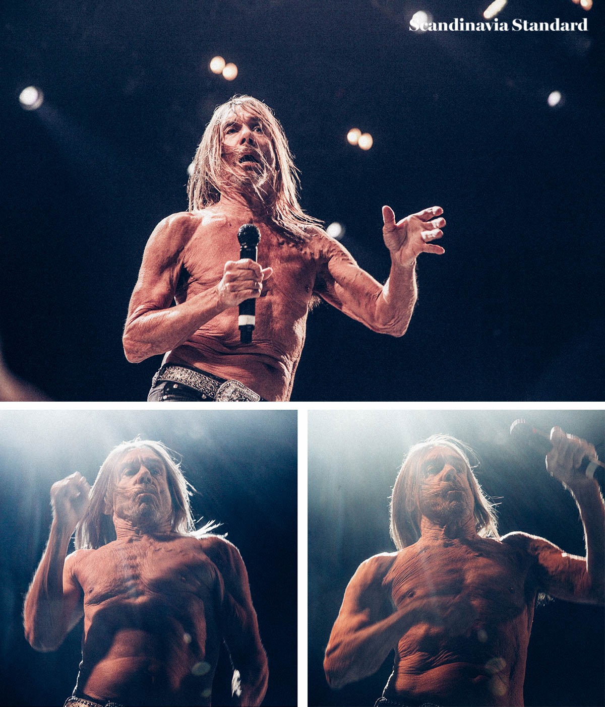 northside-festival-iggy-pop-2