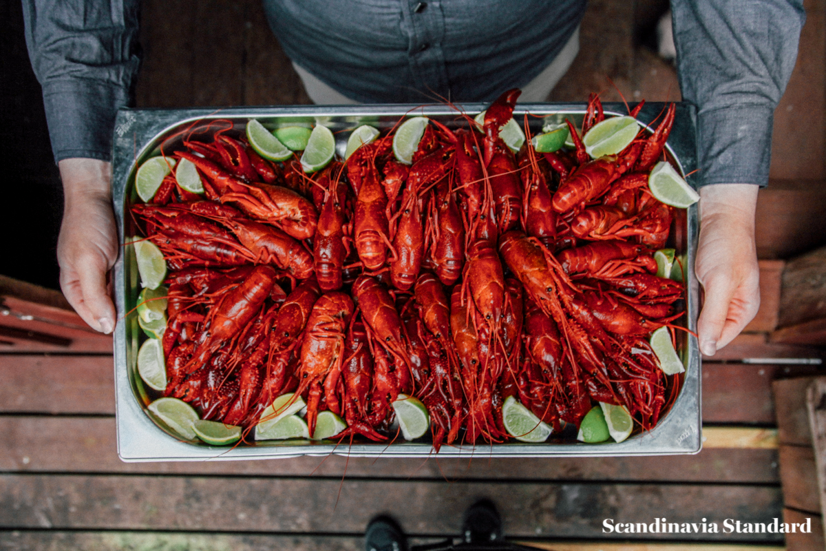 crayfish-tray-gt-weekends-swedish-crayfish-party-scandinavia-standard