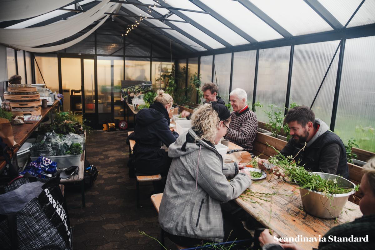 ostergro-copenhagn-rooftop-garden-group-scandianvia-standard