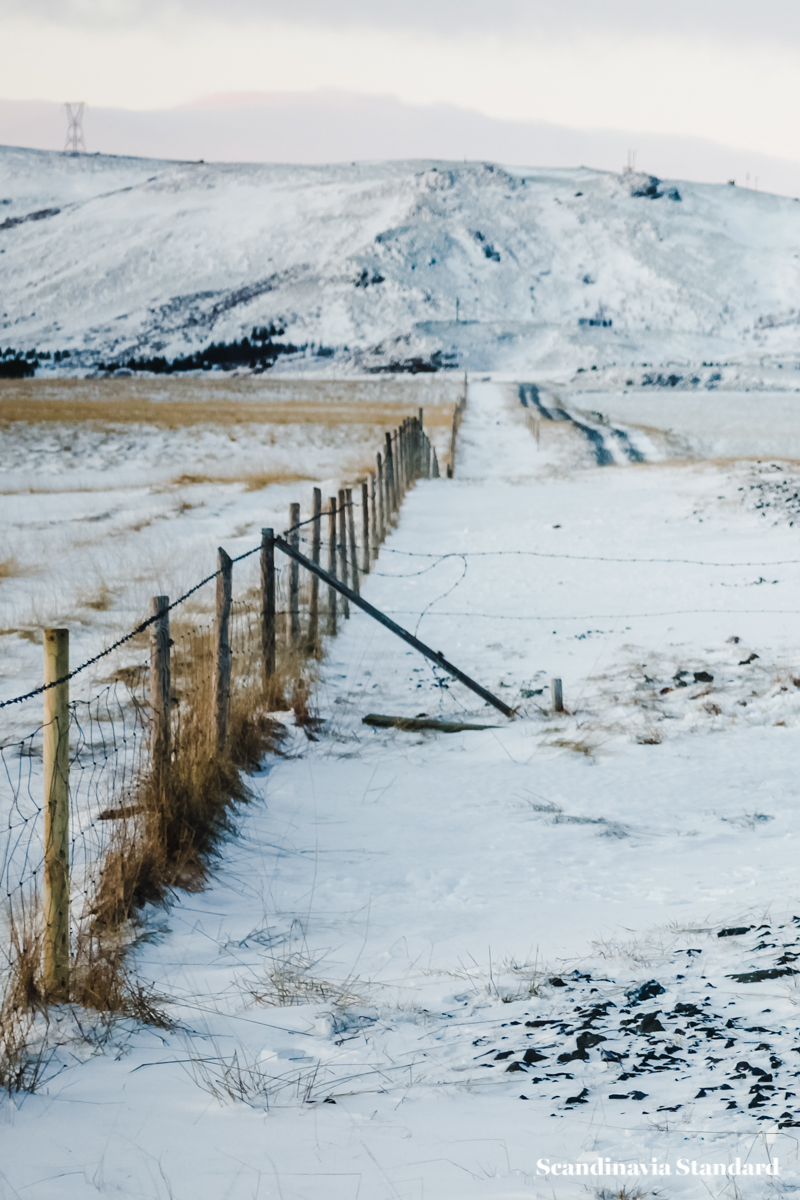 Fences in Iceland