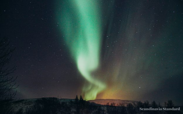 How to See the Northern Lights in Iceland | Scandinavia Standard