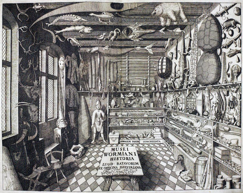 Cabinet of Curiosities - Ole Worm - Geological Museum Copenhagen | Scandinavia Standard