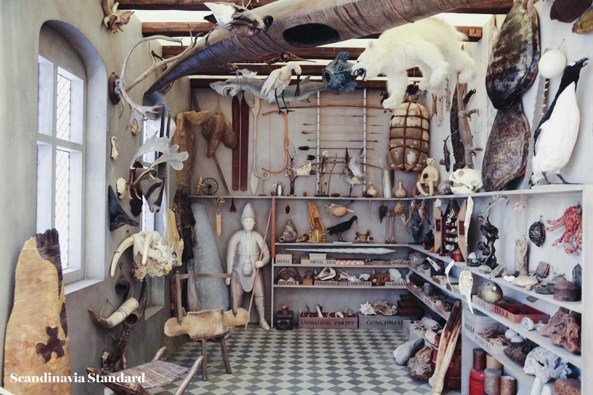 Geological Museum - Geologisk Museum Copenhagen - Cabinet of Curiosities - Ole Worm | Scandinavia Standard