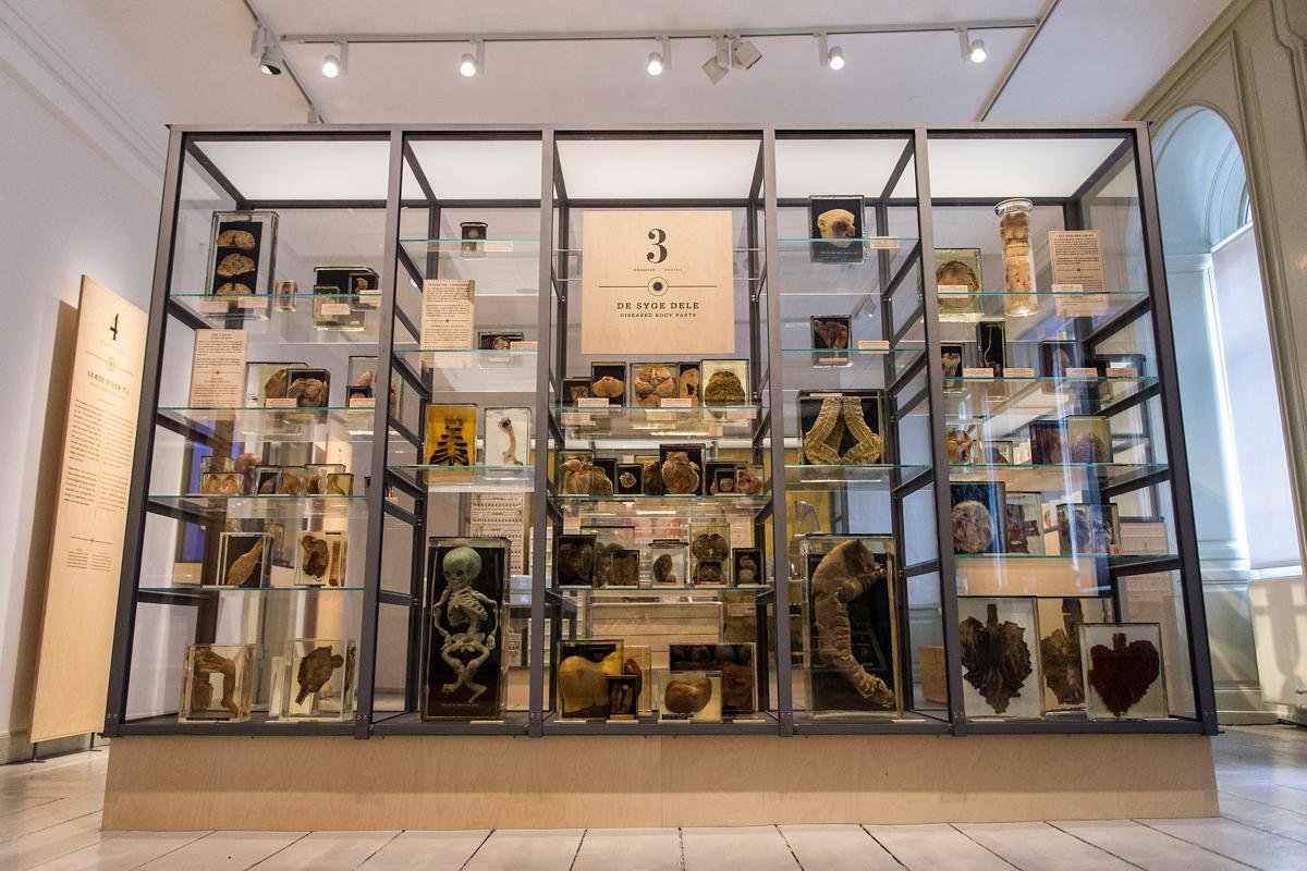 Museion Exhibit #2 035-2