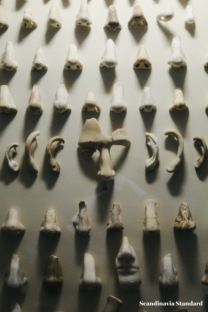 The Gallery of Noses at Glyptotek - Nasothek 2 | Scandinavia Standard