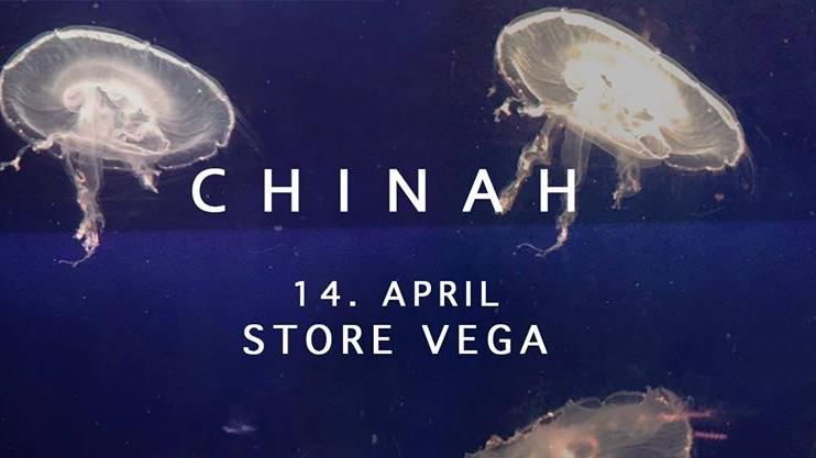 chinah store vega