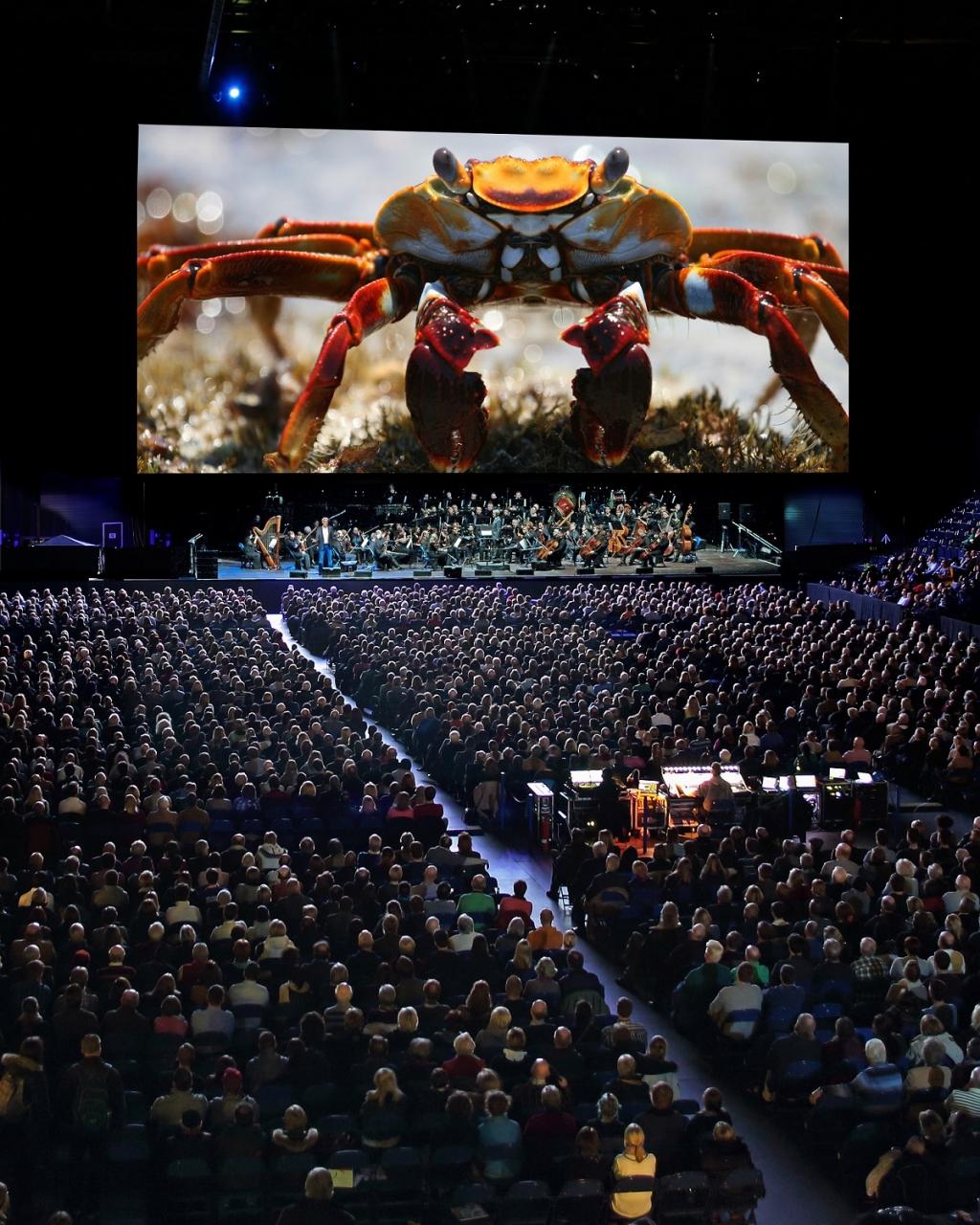 stockholm music events